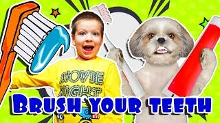 Brush your teeth! Healthy Habits Kids Song with Max