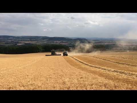 Harvest 2018 - Day 1