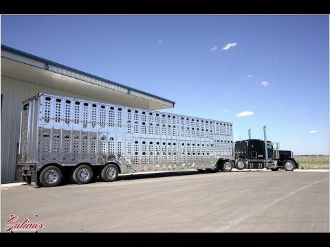 Polishing a HUGE aluminum Cattle trailer! THE BEST SHINE EVER!
