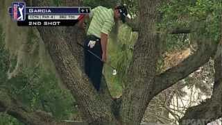 sergio garcia hits ball out of tree one handed in wgc cadillac championship 2013