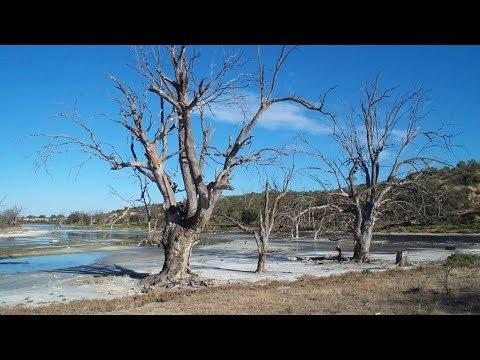 Managing Saline Groundwater