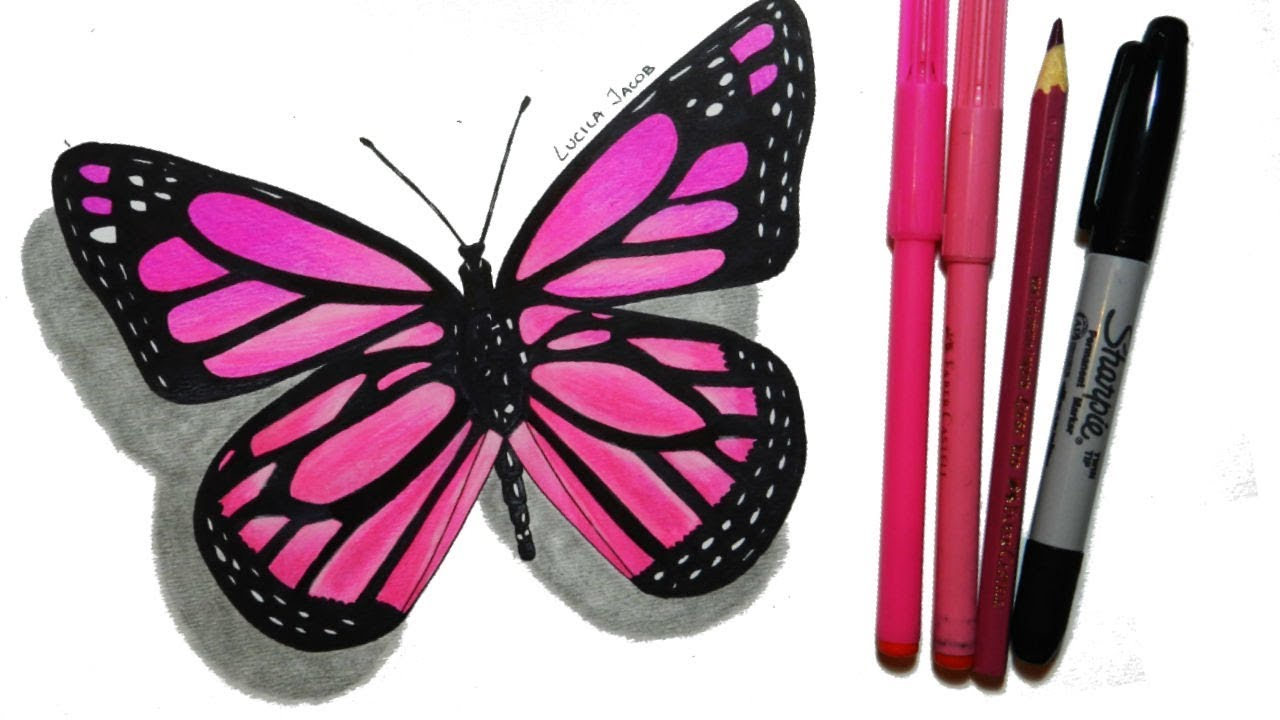 How To Draw A Butterfly Step By Step Cómo Dibujar Una Mariposa