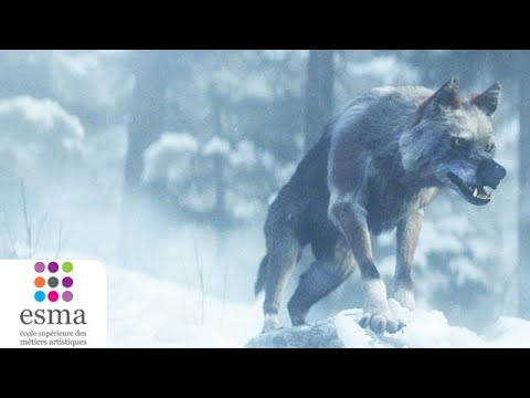 Alone a wolf's winter - ESMA 2020