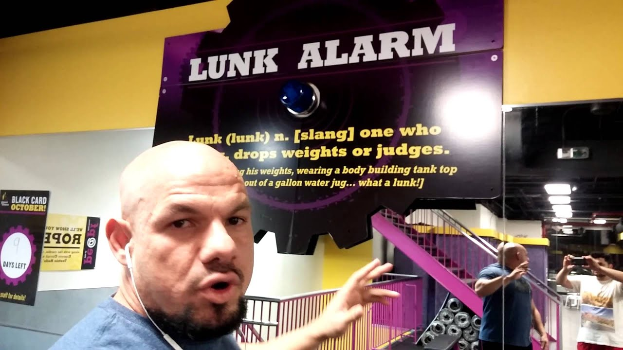 Image result for lunk alarm
