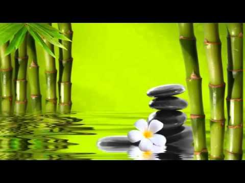 3 horas de sonidos de agua para relajacion