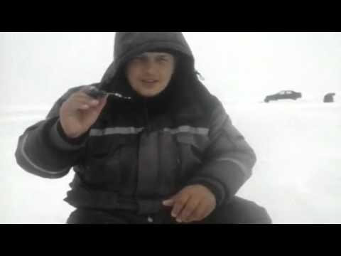 Новости с водоёмов Республики Марий Эл » Реальная-Рыбалка рф