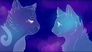 """Коты-Воители """"Кафель"""""""