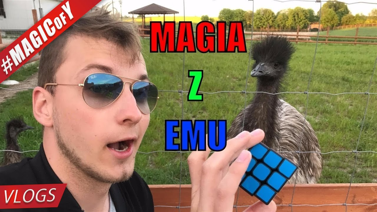 MAGIA Z EMU – LIVE NATURE SPONTAN