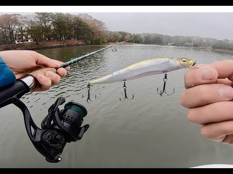 Slaying GIANT Speckled Trout In Virginia Beach - Speckled Trout HOW TO