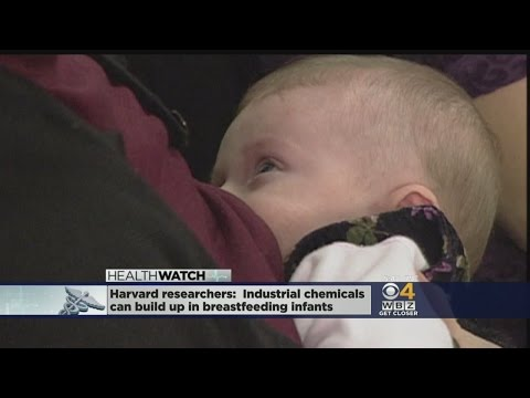 Industrial Chemicals Can Build Up In Breastfeeding Infants, Harvard Researchers Say