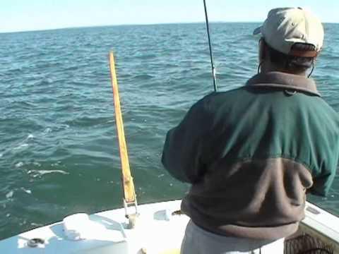 Martha's Vineyard 2002 Striped Bass Fishing