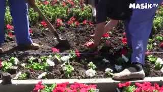 Посадка цветов на клумбах(Видеоролик для самых маленьких о том, как цветами украшают городские улицы. Этот и другие познавательные..., 2014-05-13T12:11:30.000Z)