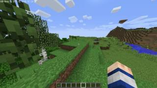 Minecraft on Core 2 Duo E7300 And GT 710 (Benchmark)