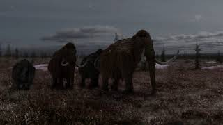 AASTUDIOS ICEAGE REEL JAN2019