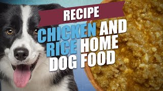 Chicken and Rice Home Dog Food Recipe (Healthy)