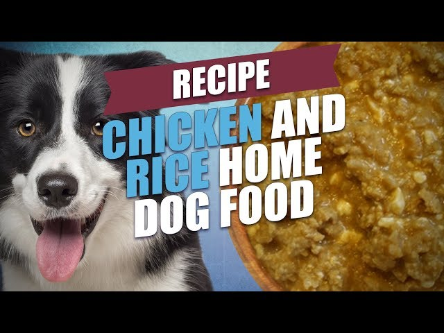 How to prepare chicken and rice for dogs 15 steps with pictures forumfinder Image collections