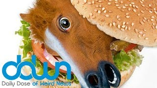 Would you eat a My Little Pony burger? * And MORE in the DAILY DOSE OF WEIRD NEWS! #DDWN