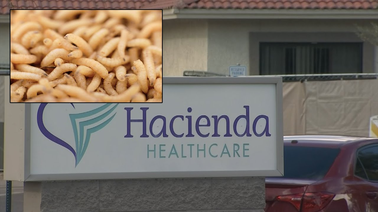 Phoenix, Arizona: Patient Found With Maggots After Incision