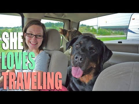 Full Time RV Walmart Hopping - Traveling From New Hampshire to Kentucky in 3 Days