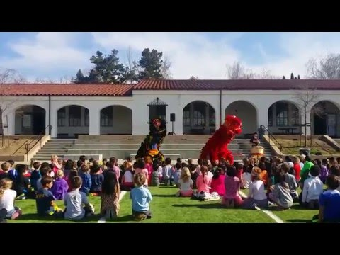 Performance - Havens Elementary School