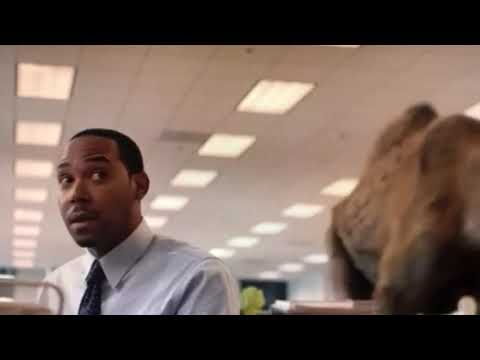 geico insurance camel commercial