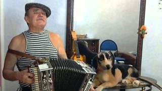 Веселье на даче. Застольные песни под гармонь.(мой сайт http://www.garmon-ru.ru/ Слова и музыка мои. Эта шуточная песня написана под впечатлением дружеских встреч..., 2012-10-22T11:08:38.000Z)