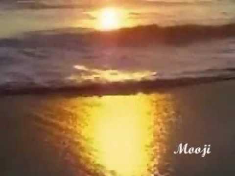 Benevolent Detachment of The Cosmic Flow ~ Spoken by Mooji