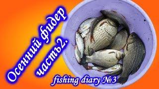 Ловля карася и плотвы Осенний фидер ч 2. fishing diary №3
