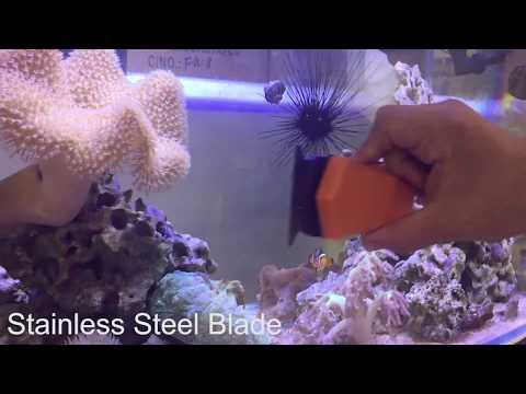 H2Pro Magnet Scraper w/ Stainless Steel & Plastic Blade