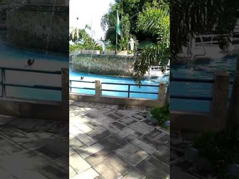 Saniya resort