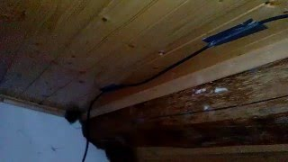 cb hf ham radio antenna 15 meter 21 mhz dipole indoor under roof