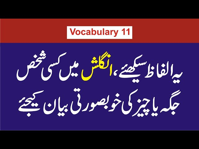 Adjectives to Describe Beautiful People and Places| Urdu, Hindi Meanings| Vocabulary 11| StepForward