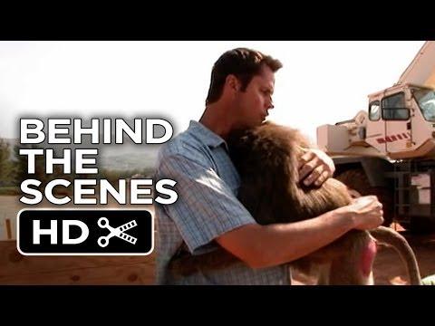 Evan Almighty Behind The Scenes - Animal Whisperer (2007) - Steve Carell, Morgan Freeman Movie HD