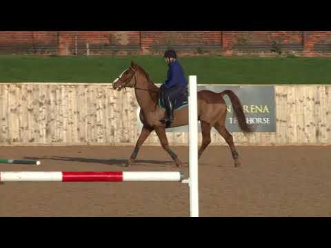 British Showjumping - Training for those returning to Affiliated competition  - Part 2