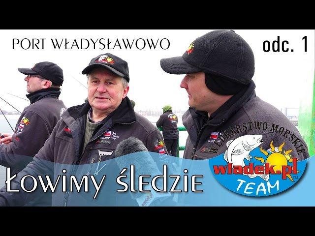 WładekTV - Łowimy ŚLEDZIE z wladek.pl TEAM w samo południe (odc.1)