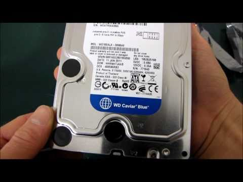 Western Digital Blue 1TB SATA3 6Gb/s Hard Drive Unboxing & First Look Linus Tech Tips
