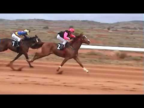 The sound of Race horses being whipped