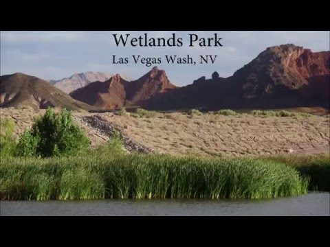Wetlands Park Trail - Las Vegas Wash