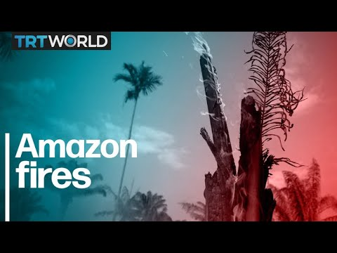Amazon Fires: More than 70,000 recorded already in 2019