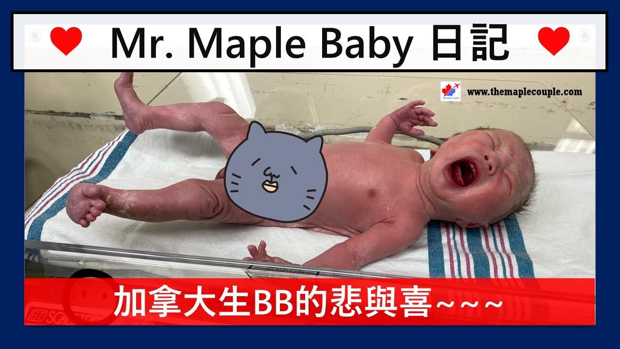 加拿大生BB的悲與喜 - 歡迎 Mr. Maple Baby 加入The Maple Couple 家庭 ~ 到底係加拿大生小朋友需要咩心理準備?