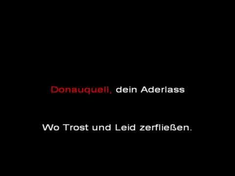 Rammstein - Donaukinder (instrumental with lyrics)