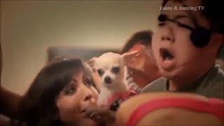 сексуальные смешные рекламные ролики 2016 года - сексуальный коммерческий сборник - смешно коммерчес thumbnail