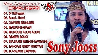 Download lagu FULL KOPLO JAWA Bareng SONY JOOSS SUMI SUMI CAPING GUNUNG Campursari JAMPI STRES