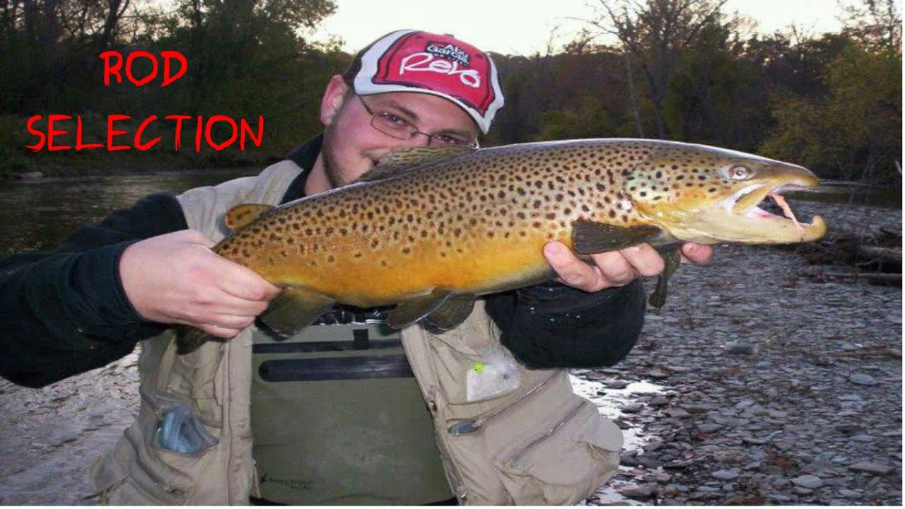 Trout fishing best trout rod youtube for Best trout fishing in the us