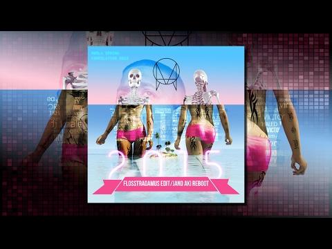 DJ Khaled vs Ragga Twins, Skrillex - All I Do Is Win vs Bad Man (Flosstradamus Edit)