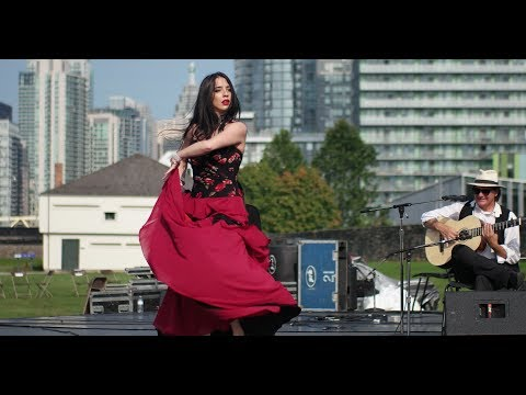 Beautiful Dance Performance by Ritmo Flamenco