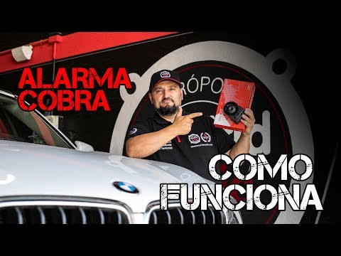accesorios de coche antirrobo vehiculos Alarma COBRA Modelo AK4625 con Can Bus