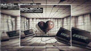 Molecul - Где нет места цифрам...осталась любовь? (2010) [Nu Metal/Metalcore/Electronic]