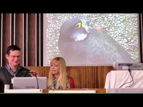 European Biodiversity Conference.mpg