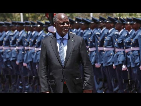 Nutty business: Tanzania president using army to save cashew industry
